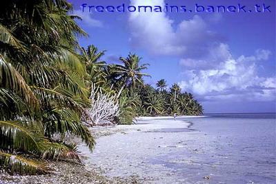 Бесплатный домен TK от островов Токелау
